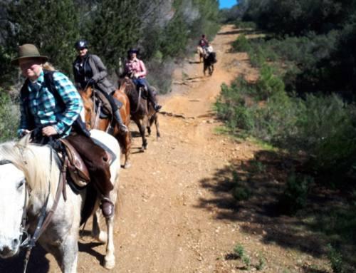 Equitazione – Gite a cavallo