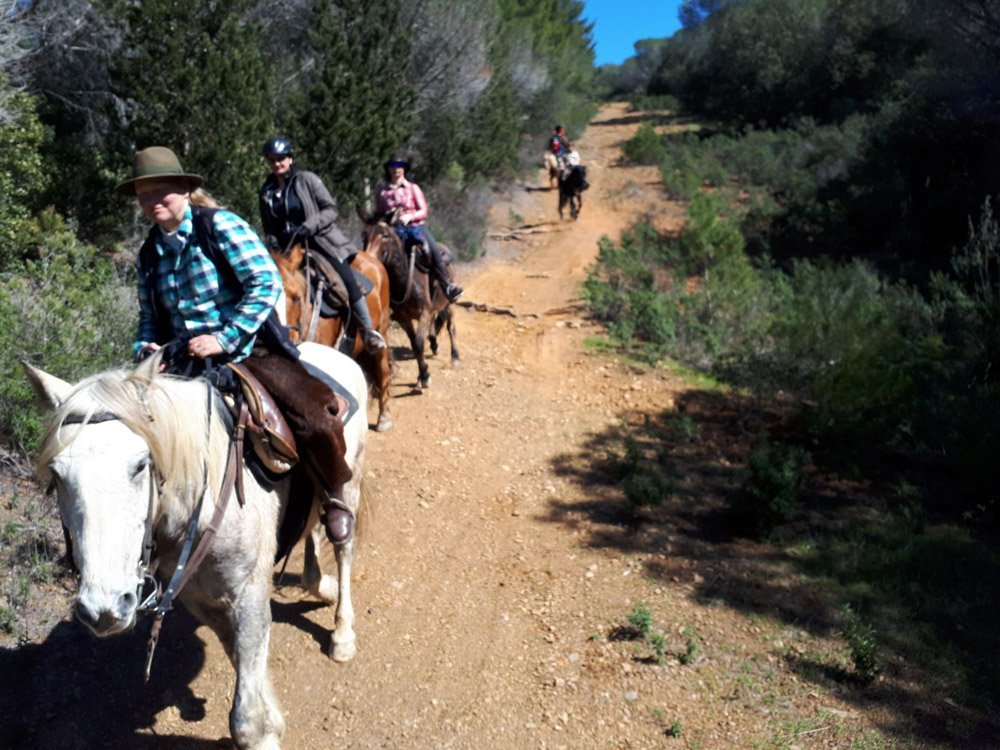 Gite a cavallo - Maremma Sans Souci