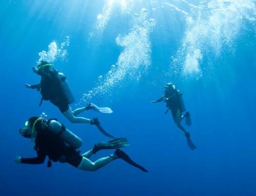 Immersioni in Maremma