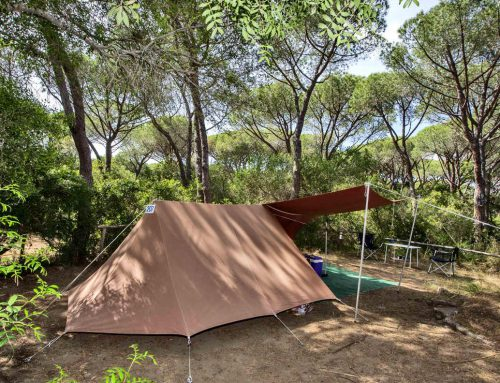 Camping in forest green Maremma