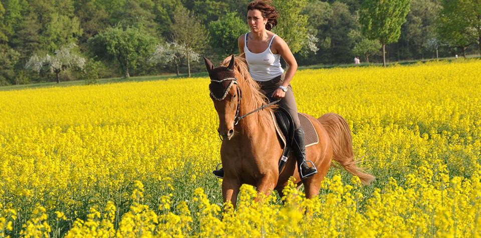 Equitazione e passeggiate a cavallo in Maremma